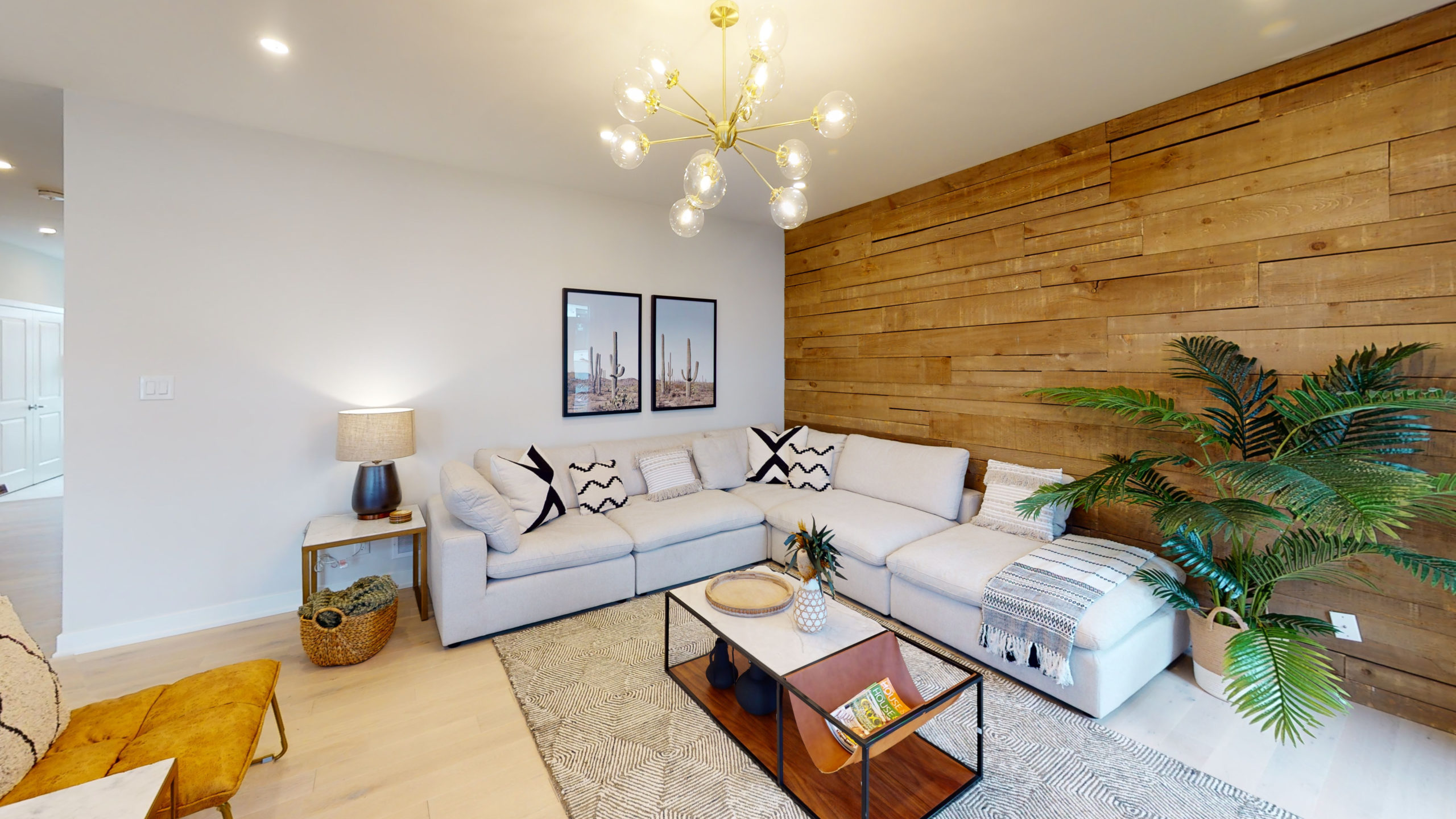 Brightly lit living room with leather couch and houseplant